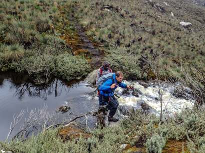 Fording a River on the Way to Weismann's Peak, Rwenzori Mountains National Park