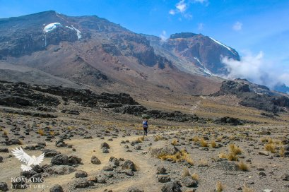 A Porter on the Lonely Trail to Barafu Camp, Mount Kilimanjaro, Tanzania