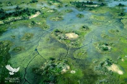 An Island in the Flooded Okavango Delta, Botswana