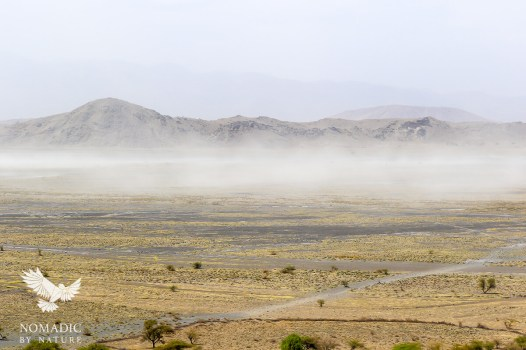 A Dust Storm over the Plains, Lake Natron, Tanzania