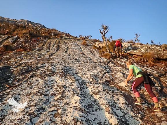 Scrambling to Sapitwa Summit, Trekking Mount Mulanje, Malawi
