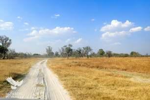 Sandy Roads, Okavango Delta, Botswana
