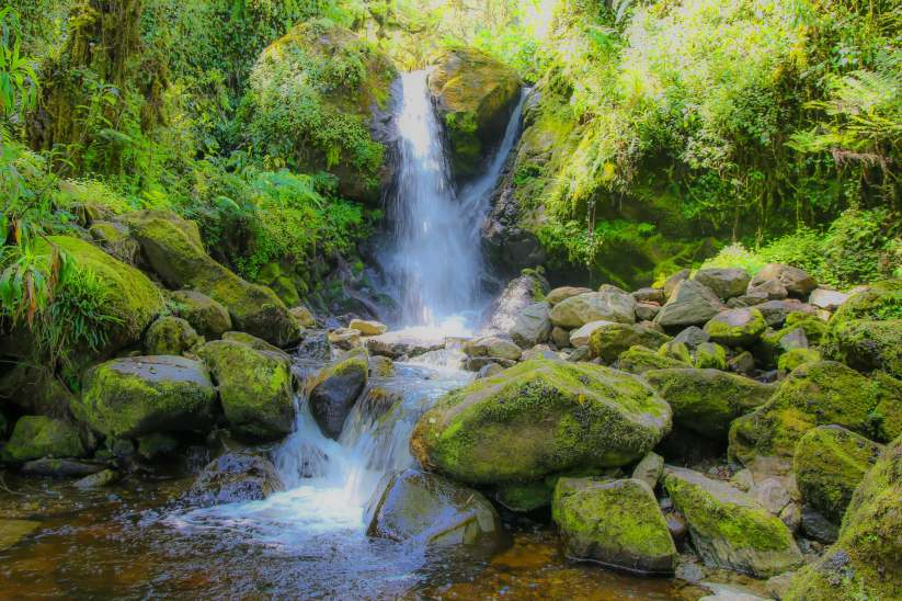 Enock's falls, Rwenzori National Park, Uganda