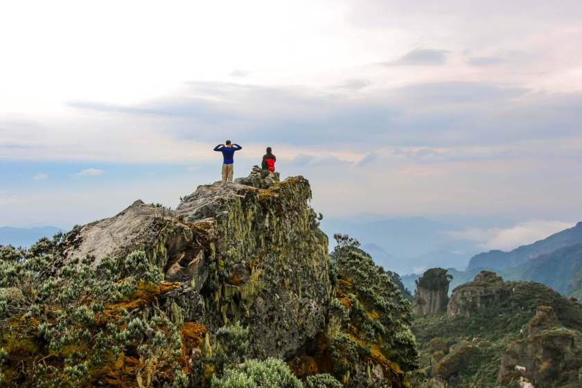 A Top Mutinda's Look-Out, Rwenzori Mountains