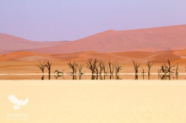 Dead Vlei in a Mirage, Sossusvlei, Namibia