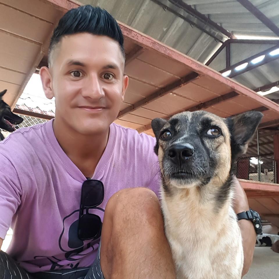 Saving Dogs at Soi Dog Foundation - Nomadic Travel