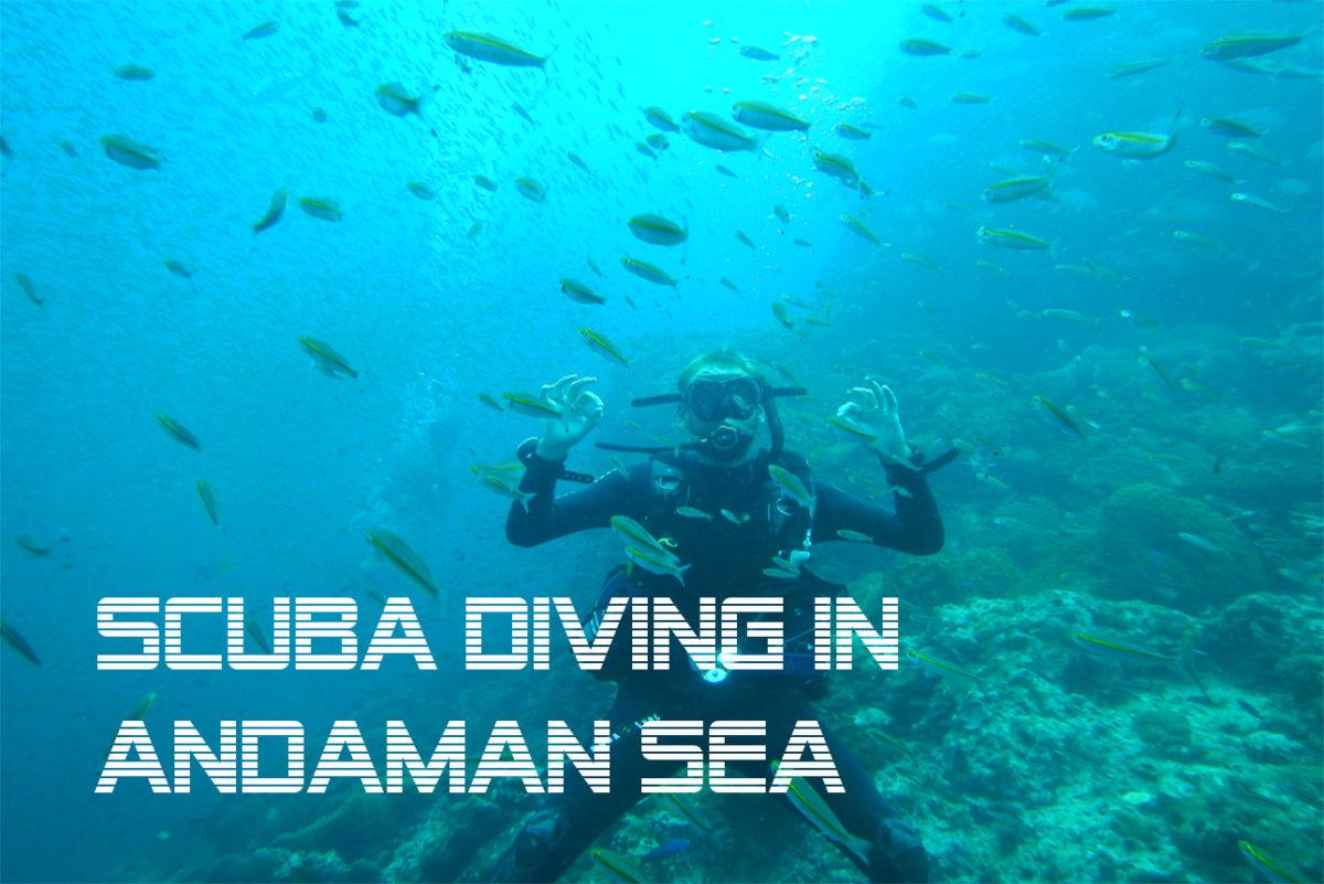 scuba diving in andaman sea blog