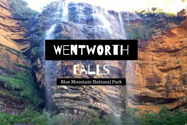 Wentworth falls blue mountain national park