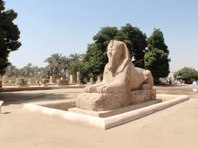 A Sphinx.