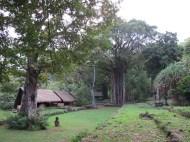 Archaelogical Site