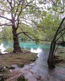 Source de la Buèges
