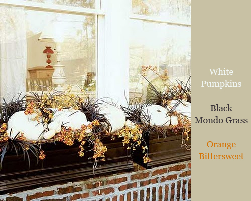 White Pumpkins in Windowboxes via Cottage Living