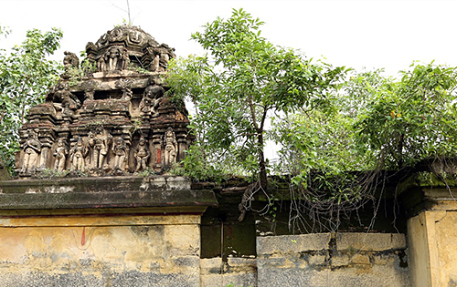 Jungle Reclaiming Old Osur Temple