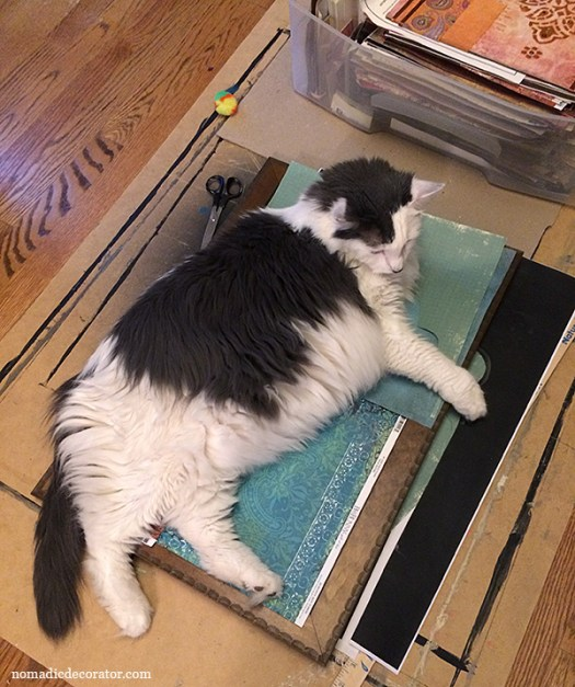 Chaai the Crafty Cat Chooses Paper