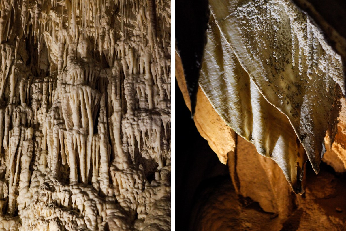 Nomadic Fare in Ruakuri Cave, Waitomo, New Zealand
