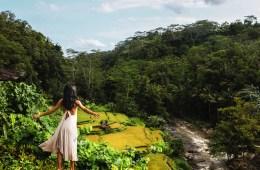 Nomadic Fare at Kupu Kupu Barong Villas and Tree Spa, Bali, Indonesia