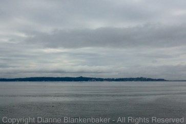 Looking back at Astoria from Dismal Nitch
