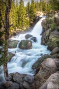 Alberta Falls is one of the easiest best trails in Rocky Mountain National Park