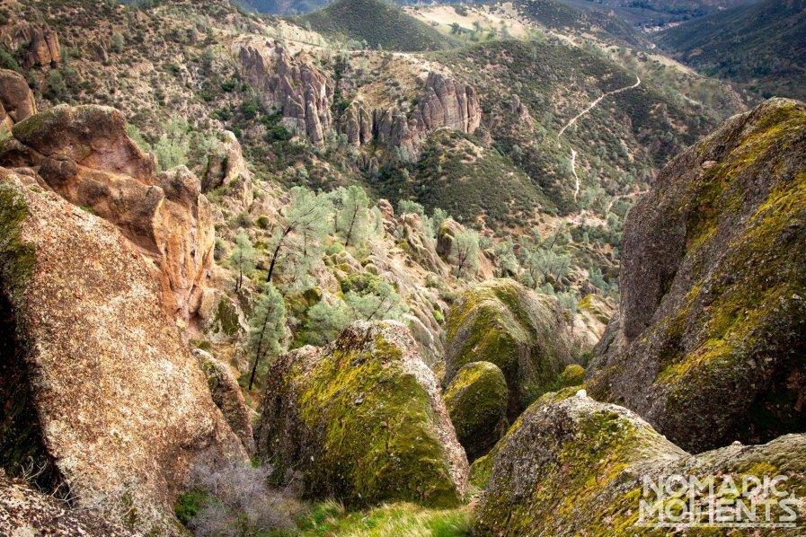 The Pinnacles Terrain