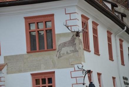 Casa cu Cerb in Sighişoara, Romania