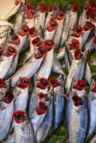 Üsküdar Balıkçılar Çarşısı in Üsküdar, Istanbul, Turkey