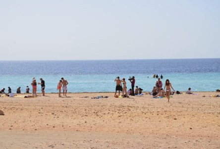 The second beach where we snorkeled at Ras Mohammad National Park in Sinai, Egypt