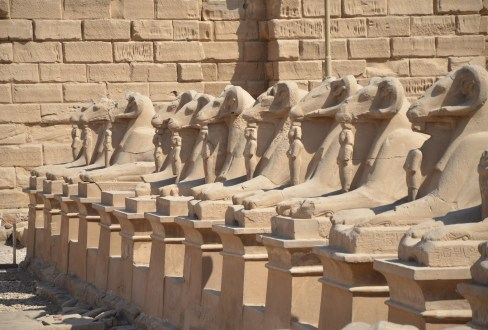 Row of sphinxes at Karnak Temple in Luxor, Egypt