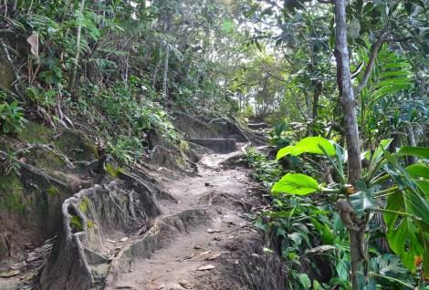 Trail, Trindade, Brazil
