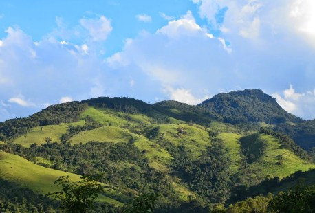 Penha in Parque Nacional da Serra da Bocaina, Brazil