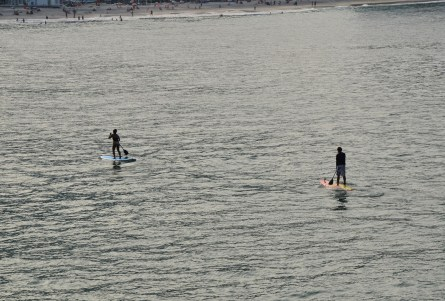 Stand-up paddle board in Rio de Janeiro, Brazil