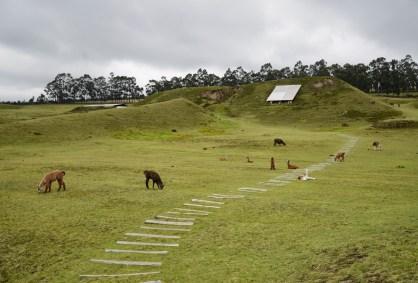 Cochasquí in Ecuador