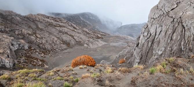 Visiting a Volcano