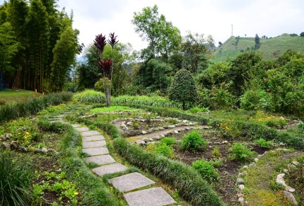 Herb Garden at Recinto del Pensamiento in Manizales, Caldas, Colombia