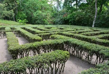 Topiary maze at Quindío Botanical Garden