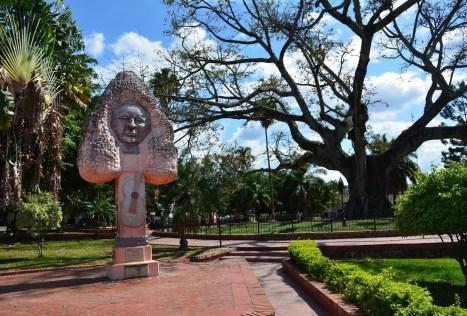 Ceiba de la Libertad in Gigante Huila Colombia