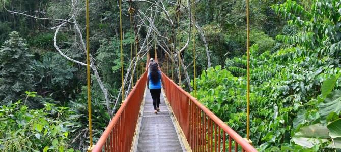 Quindío Botanical Garden