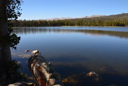 Fiddler's Lake in the Shoshone National Forest on The Loop Road in Wyoming