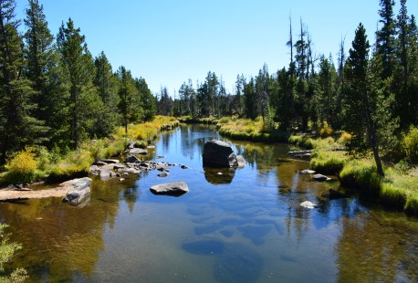 Little Popo Agie River in the Shoshone National Forest on The Loop Road in Wyoming