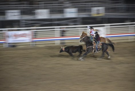 Team roping at Stampede Park in Cody, Wyoming