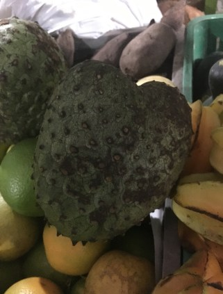 Guanábana Fruit in Colombia
