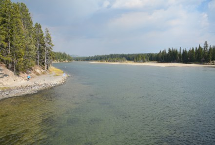 View from Fishing Bridge in Yellowstone National Park