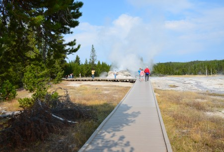 Path to Grotto Group at the Upper Geyser Basin in Yellowstone National Park, Wyoming