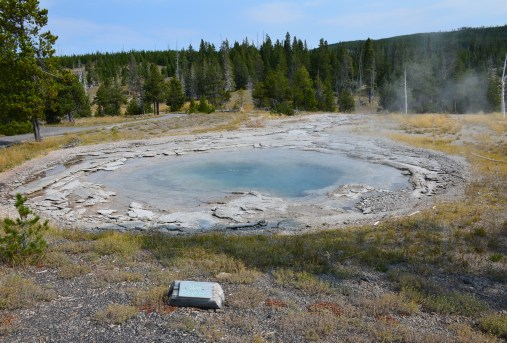 Spa Geyser at the Upper Geyser Basin in Yellowstone National Park, Wyoming