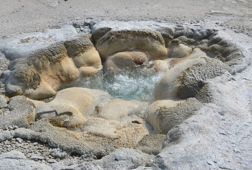 Shell Geyser at Biscuit Basin at the Upper Geyser Basin at Yellowstone National Park, Wyoming