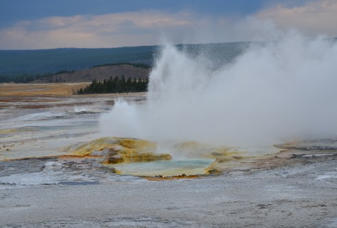 Clepsydra Geyser at the Lower Geyser Basin in Yellowstone National Park, Wyoming