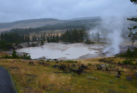 Mud Geyser at Mud Volcano Area in Yellowstone National Park, Wyoming
