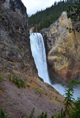 Lower Falls from Uncle Tom's Trail at Grand Canyon of the Yellowstone in Yellowstone National Park, Wyoming