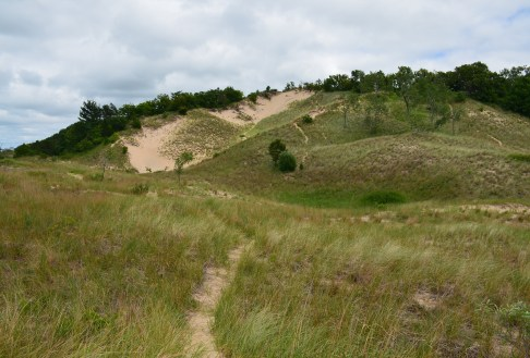 Big Blowout on Trail #10 at Indiana Dunes State Park