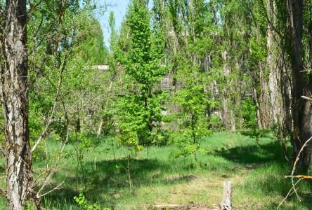 "The field at Stadium ""Avangard"" in Pripyat, Chernobyl Exclusion Zone, Ukraine"