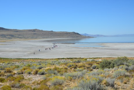 View of Bridger Bay from Lady Finger Point at Antelope Island State Park in Utah